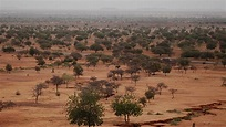 Africa's Great Green Wall is making progress
