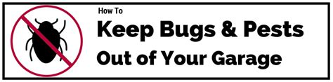 How To Keep Bugs & Pests Out Of Your Garage Quality