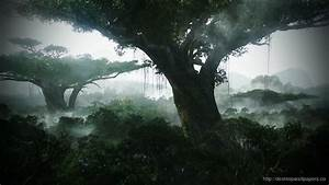 Avatar Pandora Wallpaper - Desktop Wallpapers Free