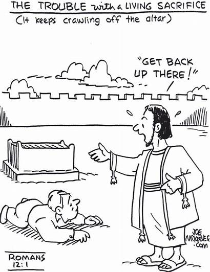 Romans Cartoons Study Updated Mckeever Joe Caption