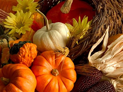 happy thanksgiving from everyone at beachfront only beachfront only 39 s weblog