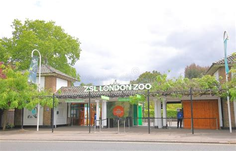 zoo london zsl