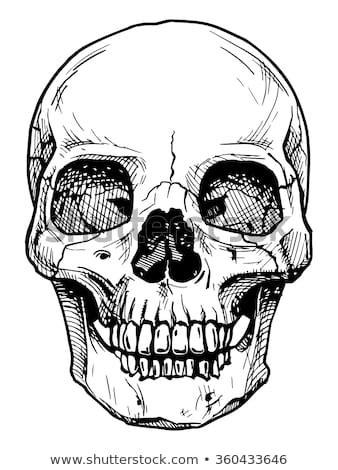 Gallery Artist Who Draw Skulls Drawings Art