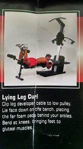 Bowflex Dumbbell Exercise Chart 50 Best Weider Crossbow Exercises Images Crossbow At