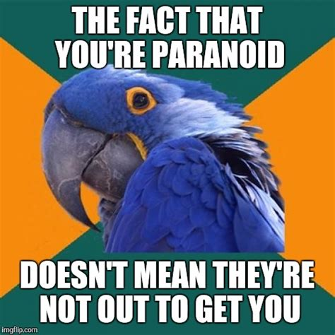Paranoid Parrot Meme - paranoid parrot meme imgflip