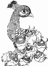 Bird Mandala Animal Animaux Peacock Coloriage Drawing Coloring Mandalas Drawings Imprimer Colorier Dessin Paon Sur Oiseaux Peacocks Feathers Wolf Enregistree sketch template