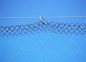 fruit tree netting smart net systems industrial netting systems