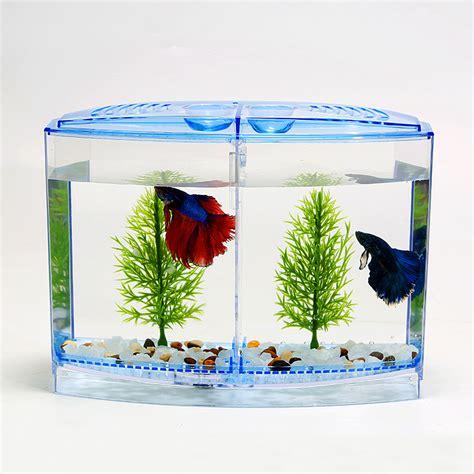 bureau de change amiens aquarium betta pas cher 28 images aquarium 30l achat