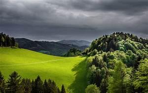 Green, Forest, Green, Field, Wooden, Mountain, House, Dark, Black