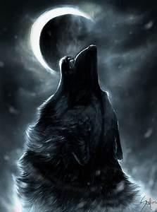 Fondos de pantalla de lobos en movimiento   Fondos de Pantalla