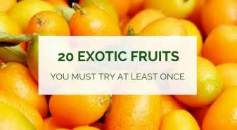 kitchen collection stores 20 fruits you must try at least once healthy food
