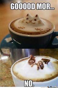 Grumpy Cat Morning Coffee