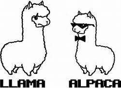 llama and alpaca coloring page wecoloringpage