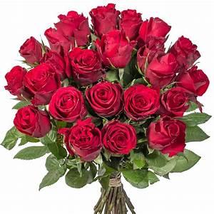 Hornspäne Für Rosen : rosenbouquet rot premium und bl tenrausch pfingstrosen handcreme f r dich versandkostenfrei ~ Eleganceandgraceweddings.com Haus und Dekorationen