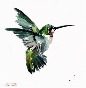 Hummingbird, Flying, 12 X 12 in, 30 X 30 cm, original ...