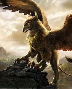 Gryphon (Griffin) A magical lion/bird guardian of sacred ...