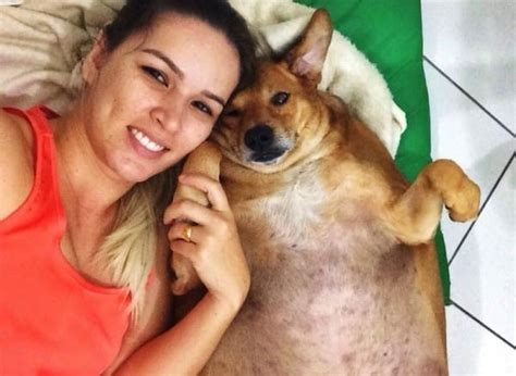 Here's What It Looks Like When An Obese Dog Loses 30 Pounds