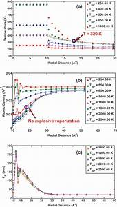 The Steady State Profiles Around A 10  U00c5 Nanoparticle For