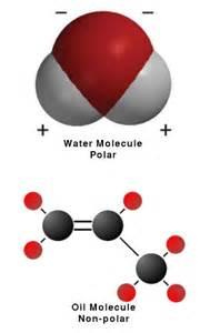 Photos of Oil Molecule