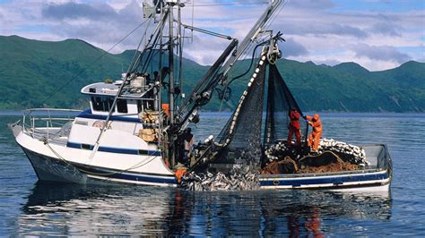 cleaner fuels  fishing boats  backfire