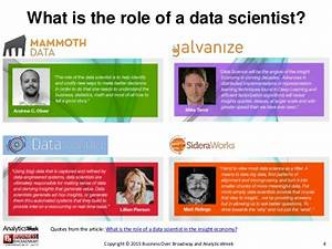 Investigating data scientists