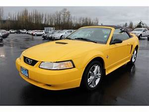 1999 Ford Mustang Cars for sale
