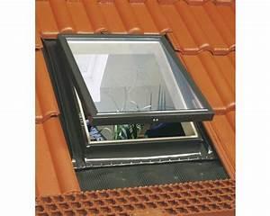 Fenster Kaufen Bei Hornbach : ausstiegsfenster aron 46x75 cm bei hornbach kaufen ~ Watch28wear.com Haus und Dekorationen