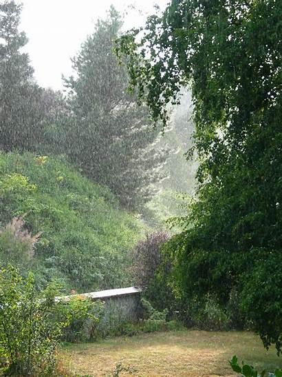 Rain Falling Wikipedia Season Shall Land Trees
