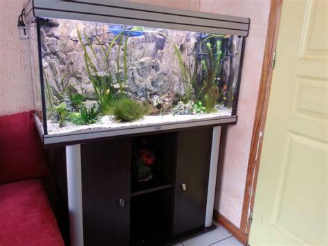 d 233 co aquarium promo jardiland nancy 1933 aquarium