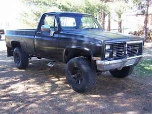 Sell New 1983 Chevy K10 In Clearfield  Utah  United States