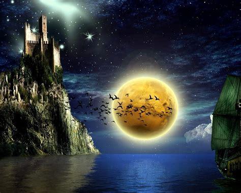 paisaje nocturno   pajaros  fondos de
