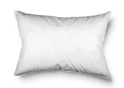 Cuscini Di Piume Cuscini Di Piume Morbidi E Igienizzati Come Lavarli Al Meglio