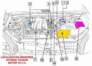 2006 Hyundai Tucson V6 Engine Diagram  U2022 Downloaddescargar Com