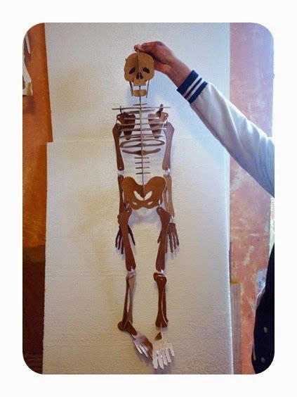 como hacer un esqueleto humano con material reciclable