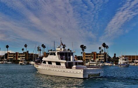 Yellow Boat Rental San Diego by Constitution Sport Fishing H M Landing San Diego