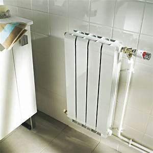 Radiateur Pour Chauffage Central : radiateur pour chauffage central fioul chaudiere fuel 30kw ~ Premium-room.com Idées de Décoration
