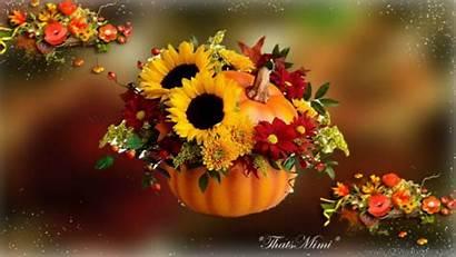 Autumn Pumpkin Fall Flower Baskets Wallpapersafari