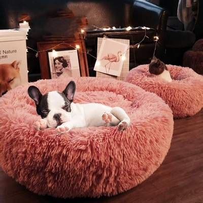 fluffy marshmallow cat dog bed freakypet