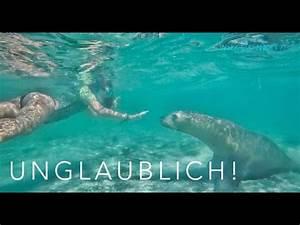 Der Schönste Tag : der sch nste tag unseres lebens l australien work and travel 12 youtube ~ Heinz-duthel.com Haus und Dekorationen