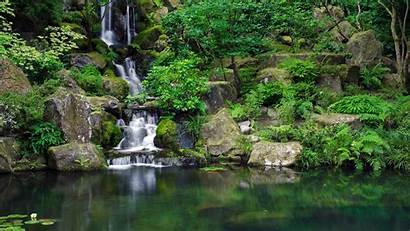 Desktop Jungle Wallpapers Nature Waterfalls Scenes Waterfall