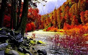 Awesome Autumn River Background wallpaper | nature and ...