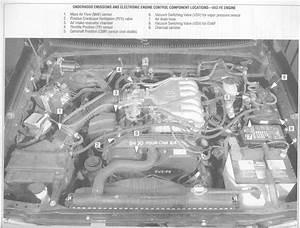 1990 Toyota 4runner Engine Diagram