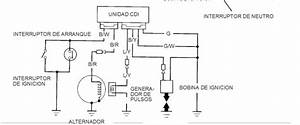 Shindengen Cdi Wiring Diagram
