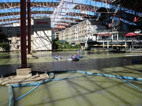 Paddle Boats St Louis by View From The Paddle Boats Rental Area Picture Of St