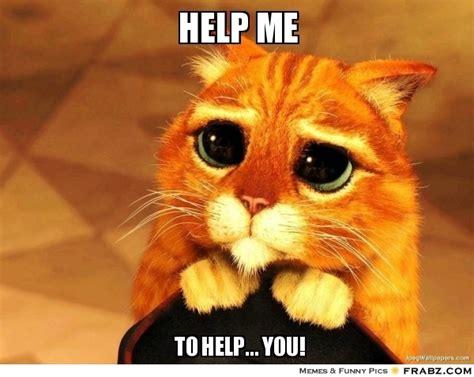 Help Me Help You Meme - help me beggin cat meme generator captionator