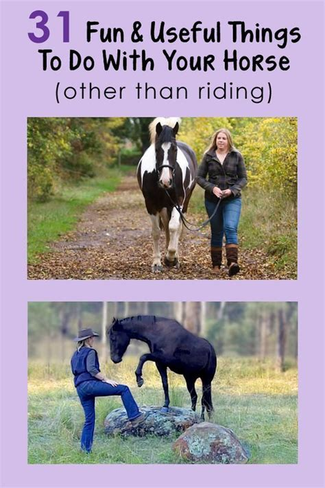 horse things horses riding fun useful training tricks barn tips than exercises summer games mounting ride western facts go learn