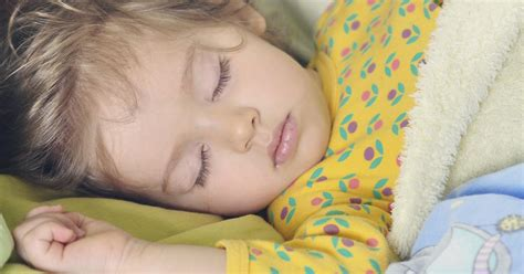 beyond early bird or owl expert says there are 4 257 | little girl sleeping