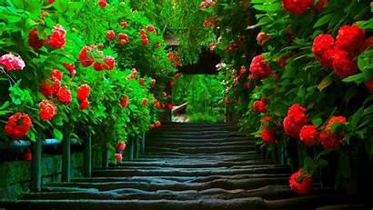 Widescreen 1080 Background Pretty Amazing Landscape Path