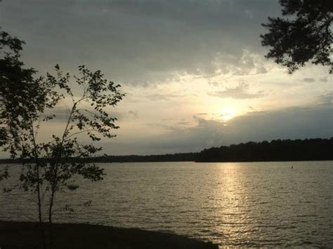 West Point Lake Ga Boat Rentals by Joey Mines Fishing Guide Picture Of Highland Marina