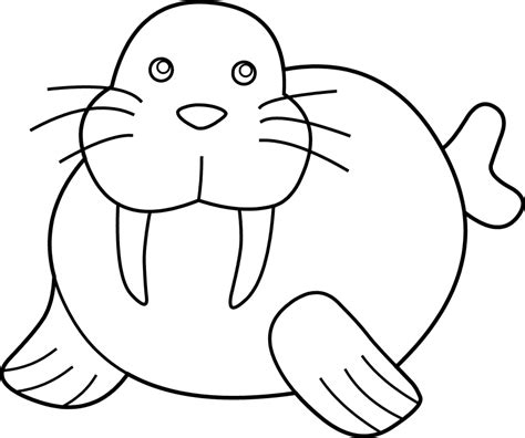 seal clipart black and white walrus clipart clipartion